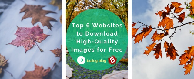 Top 6 Websites to Download Free High-Quality Stock Images